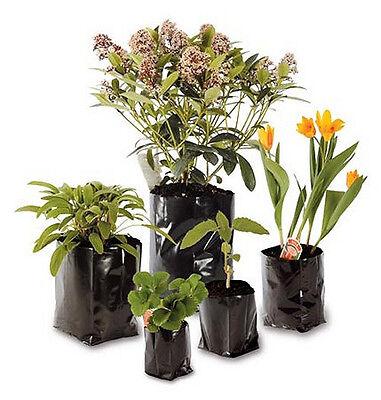 10 5lt LITRE BLACK POLYTHENE POLY POTS PLANT CONTAINER