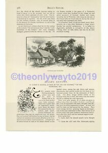 Cottages-at-Studland-Dorset-more-on-reverse-Book-Illustration-Print-c1893