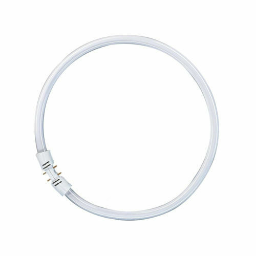 Osram Leuchtstofflampe T5 FC Circline Ring Lumilux 2GX13 Ringröhre Ringlampe