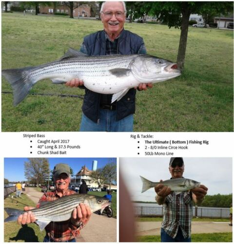 Details about  /3 Surf Fishing Rigs Striper Striped Bass Catfish Drum The Ultimate Bottom