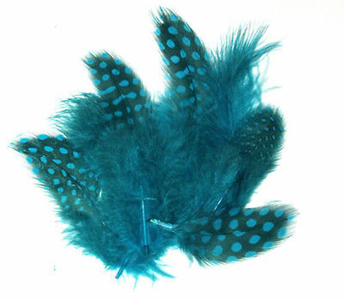 """1//4 lb Spotted Guinea Hen Feathers 1-4/"""" body plumage 12 colors 1600 count"""