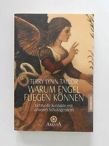 Terry-Lynn-Taylor-Warum-Engel-fliegen-koennen-Lichtvolle-Kontakte-Schutzgeister