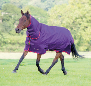 Shires Tempest Original 300 Combo Turnout Rug - Purple Red