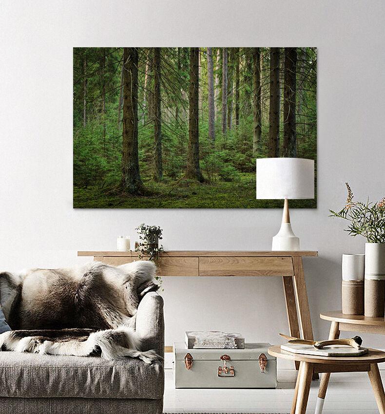3D Grüner Wald Wiese 865  Fototapeten Wandbild BildTapete AJSTORE DE Lemon