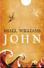 John by Niall Williams (Paperback, 2008)