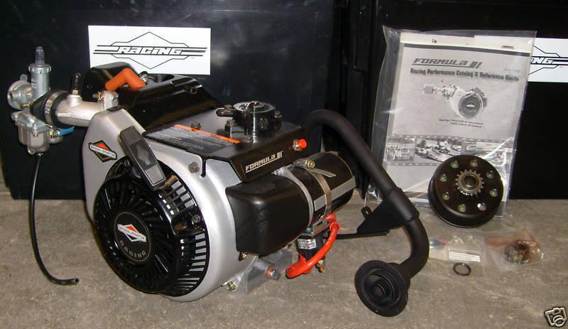 Briggs & Stratton World Formula Go Kart  Racing Engine Mini Bike Drift Trike