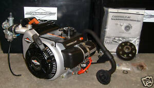 Details about Briggs & Stratton World Formula Go Kart Racing Engine Mini  Bike Drift Trike