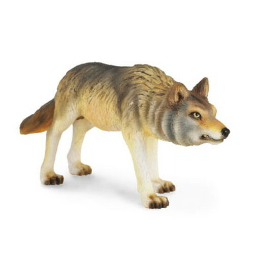 Collecta 88342 Timber Wolf Hunting Miniature Animal Figure Toy