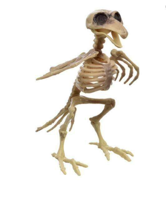 2 SKELETON CROW BIRDS Fossil Bones Poseable Dead HALLOWEEN Home Decor Prop New!