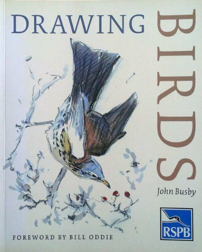 Drawing Birds: An R.S.P.B.Guide (Draw Books) By John Busby