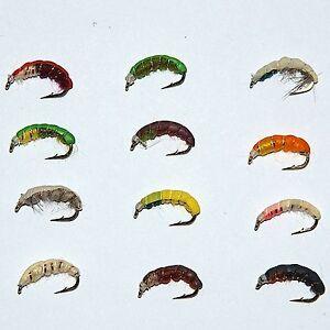 24 Assorted Epoxy Buzzers