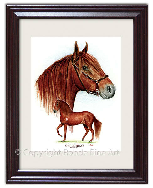 CAPU NO - FAMOUS PASO FINO  stallion FRAMED HORSE ART signed Rohde NICE   good quality