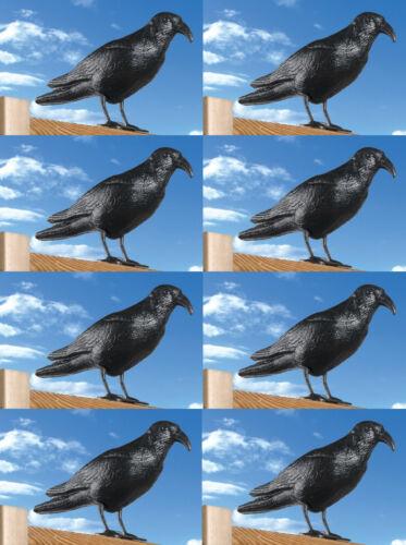 8x Taubenschreck Raben Krähe Rabe Krähen Taubenabwehr Vogelschreck Vogelscheuche
