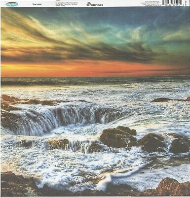 SHELLS 12x12 Dbl-Sided 2pc Scrapbooking Paper SEA SAND BEACH OCEAN