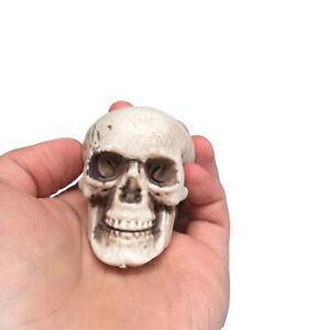 Human-Skull-Decors-Prop-Skeleton-Plastic-Head-Halloween-CoffeeBar-Ornaments-Cool