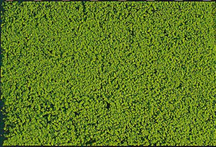 Heki 1600 mikroflor Belaubungsvlies hellgrün 28x14cm
