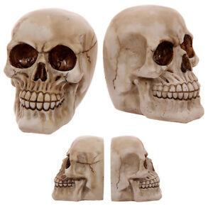 Totenkopf-Buchstuetzen-Gothic-Skull-Mystik-Skelett-11-5cm-Deko-Fantasy-Schaedel