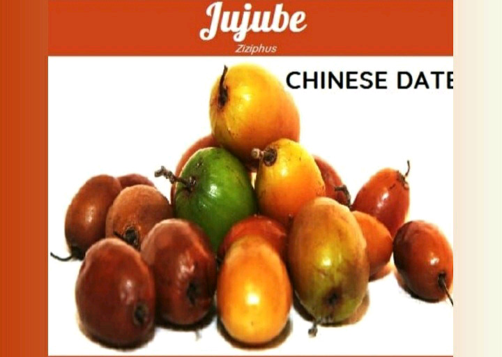 Wanted! Exotic Fruit trees or Dwarfs | I am looking to buy these