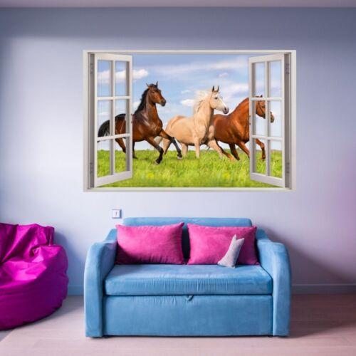 Mädchen Kinderzimmer Deko Pony 157 Wandtattoo Fenster Pferde auf Wiese