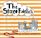 You Are Having a Wonderful Time by The Stereo Fidelics (CD, Disc Makers)