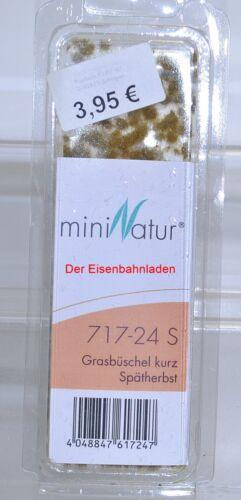 miniNatur 717-24 S Grasbüschel kurz Spätherbst NEU in OVP -Da12.5.