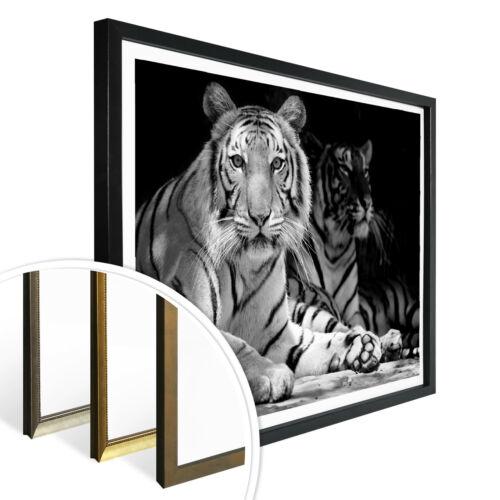 Poster Stars and Stripes WANDBILD DEKO FSC zertifiziert 130g//m² Spezialpapier