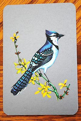 BIRDS - BLUE JAY ON SILVER - SINGLE VINTAGE SWAP PLAYING CARD