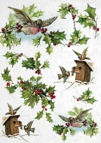 SCRAPBOOKING FAMILY BIRDS 1 DECOUPAGE SHEETS RICE DECOUPAGE PAPER CRAFT