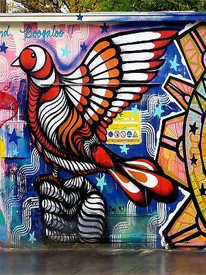 ART PRINT POSTER PHOTO GRAFFITI MURAL STREET PSYCHEDELIC DOVE NOFL0304