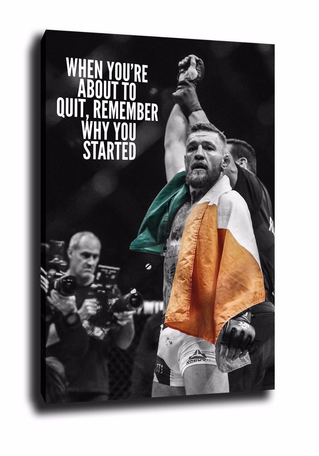 Conor McGregor Lona Impresión Impresión Impresión Foto Poster Pa rojo  Arte Boxeo UFC Mayweather 29b4d3