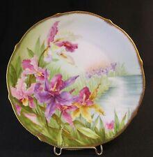 Antique Handpainted Iris Floral Bavarian SUMMER Plate Artist Signed Edistadt