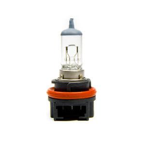 2-x-p23t-hs5-LAMPADINA-LAMPADA-ALOGENA-Moto-Roller-LAMPADINA-55-35w-12v