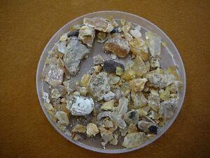 k-5504-16-g-Kauri-tree-Gum-Metaphysical-incense-chips-copal-Amber-NZ-Tane-Mahuta