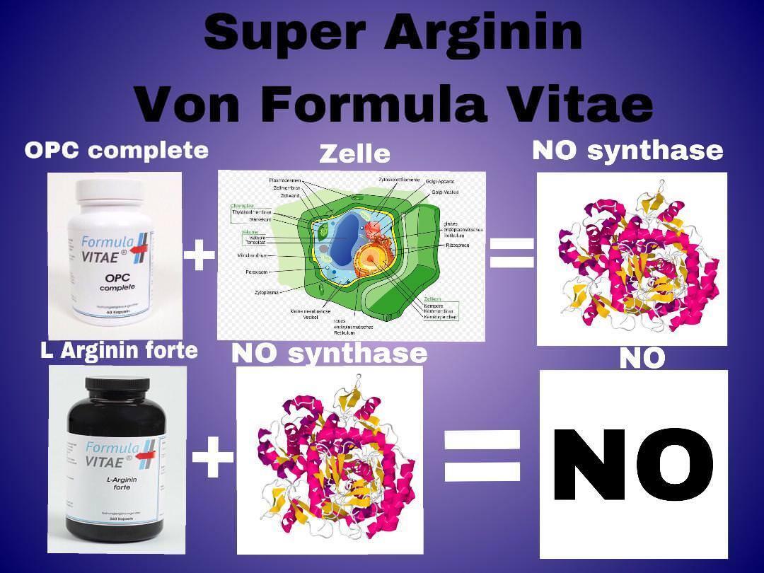 Super Arginin Arginin Super Intense - HÖCHSTE WIRKUNG durch HOCHDOSIERTES bioaktives L-Arginin 82b572