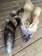 BRIGHT RED CROSS Fox Fur Pelt Skin Hunting Tanned Log Cabin Decor coyote ruff