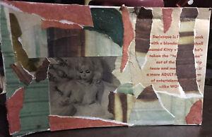 Mail-Art-COLLAGE-by-Steve-Camaro-Original-Postcard-Art-SELF-CARE-KITTY