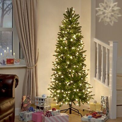 15 Ft Christmas Tree.5ft 6ft 7ft 8ft 9ft 10ft 12ft 15ft Xmas Slim Christmas Tree Aspen Pine Luxury Pr Ebay