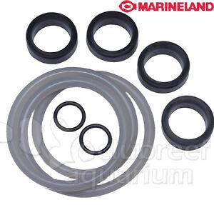 Marineland C360 | Marine World