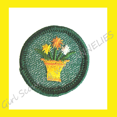 Flowers Decorating Combine Ship EUC 1950s INTERIOR DECORATION Girl Scout Badge