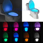 8 Color Durable Body Sensing Automatic LED Motion Sensor Toilet Bowl Night Light