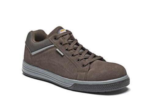 Dickies Anvik FC 9521 Brown s1-p Sra zapatos zapatos de seguridad zapatos de trabajo