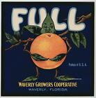 FULL Vintage Florida Citrus Crate Label, anthropomorphic, **AN ORIGINAL LABEL**