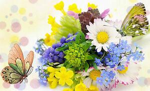 Framed-Print-Flowers-amp-Butterflies-Picture-Poster-Art-Rose-Daisy-Butterfly