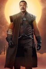 """The Mandalorian Poster Collector/'s Poster DISNEY STAR WARS Textless 11"""" X 17"""""""