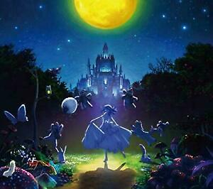 Aimer I Beg You First Limited Edition Fate/stay Night Heaven's Feel CD Japan