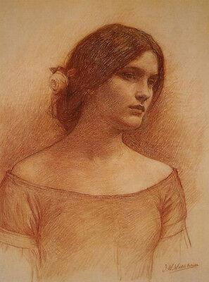 Art Print - Lady Clare Study - Waterhouse, John William