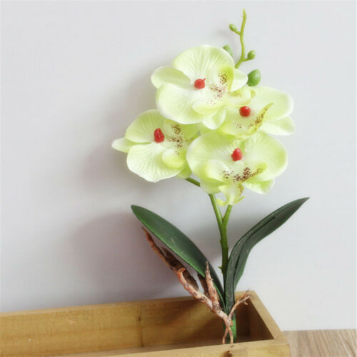 4 Tête Soie Artificielle Fleur Papillon Orchidée du Phalaenopsis Fête De Mariage Decor