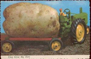npk-Exaggeration-Postcard-Potato-They-Grow-Big-Here