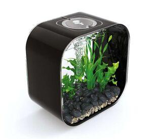 Biorb Life Aquarium Design Mcr 30 L Komplett Set Liter Schwarz Noir