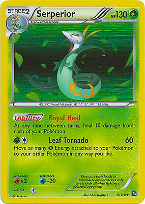 Stoutland Rare Reverse Holo Pokemon Card BW Base 83//114